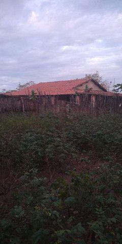 Fazenda na Várzea da Onça - Foto 3