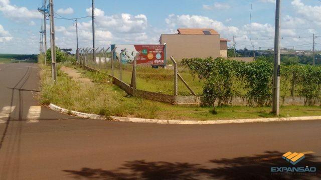 Terreno à venda em Alto das grevileas, Maringá cod:1110006021 - Foto 9