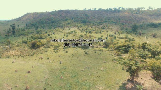 Fazenda 97 hectares nordeste mt nikolaiimoveis