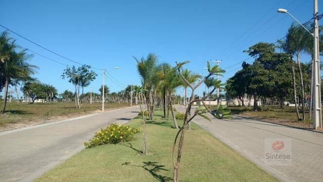 Terreno, Jabuti, Itaitinga-CE - Foto 6