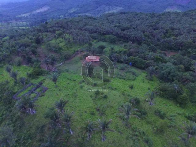 Sitio na região de santo antonio - Foto 5