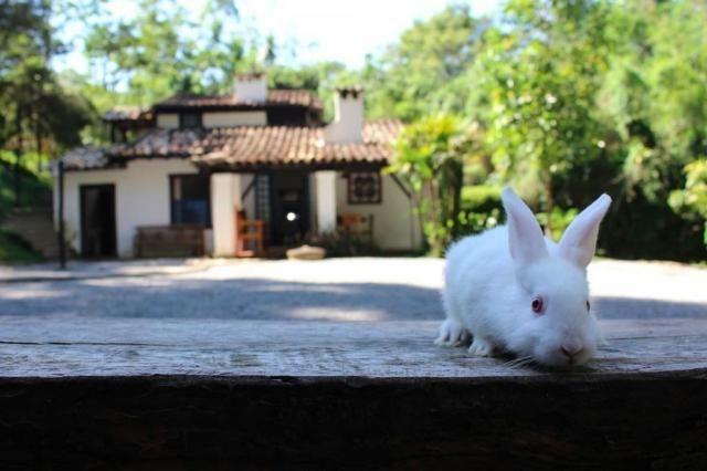 Sítio à venda com 4 dormitórios em Potuvera, Itapecerica da serra cod:6437 - Foto 13