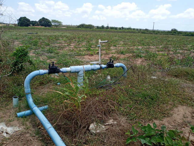 Fazenda com 20 hectares no jardins com irrigação  - Foto 4