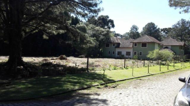 Casa à venda com 2 dormitórios em Parque das hortênsias, Canela cod:NI05502 - Foto 8