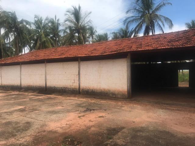 Vende-se Fazenda na Cidade de Dirce Reis-SP - Foto 9