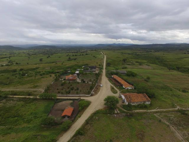 Vendesse Fazenda em GRAVATA 400 hectare - Foto 4