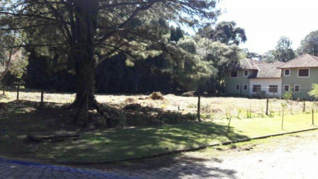 Casa à venda com 2 dormitórios em Parque das hortênsias, Canela cod:NI05502