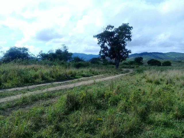 Fazenda Floresta Azul
