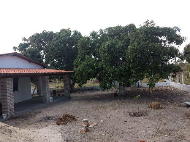 Para quem procura granja estruturada em Monte Alegre - Foto 9