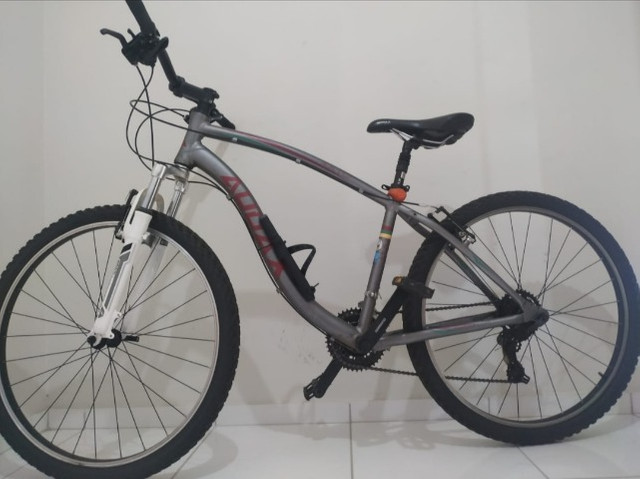 Bicicleta Audax 70