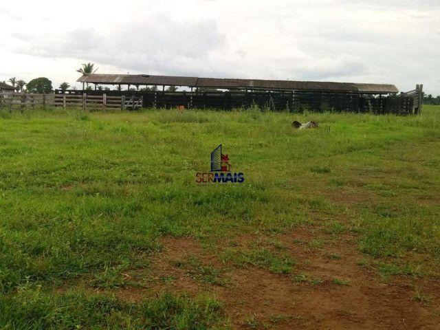 Fazenda, 335 alqueires paulista, à venda por R$ 7.370.000 Zona Rural - Nova Mamoré/RO - Foto 7