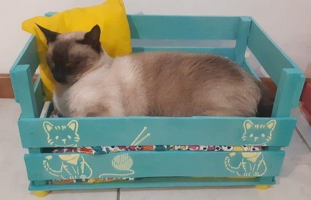 Cama Pet - Foto 4
