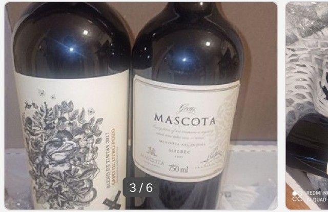 Kit Gran Reserva Mascota (últimas duas garrafas) + 1 garrafa Sapo de Otro Pozzo - Foto 2