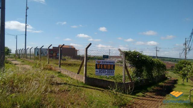 Terreno à venda em Alto das grevileas, Maringá cod:1110006021 - Foto 11