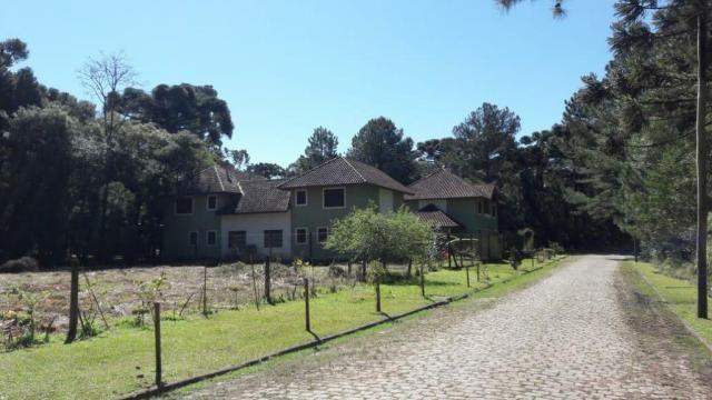 Casa à venda com 2 dormitórios em Parque das hortênsias, Canela cod:NI05502 - Foto 9