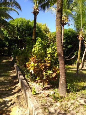 Sítio na ilha Taíru, 08 minutos da praia - Foto 8