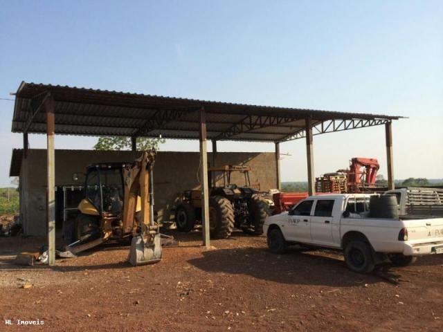 Fazenda para Venda em Gurupi, Área Rural de Gurupi, 3 dormitórios, 2 banheiros, 5 vagas - Foto 5