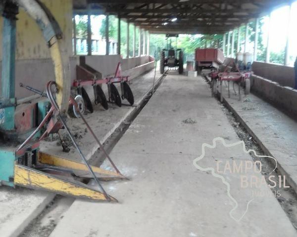 Fazenda de 98 alqueires no Sul de Minas! - Foto 11