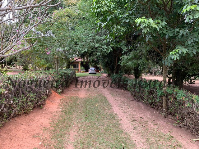 Fazenda com 69 alqueires na região (Nogueira Imóveis Rurais) - Foto 17