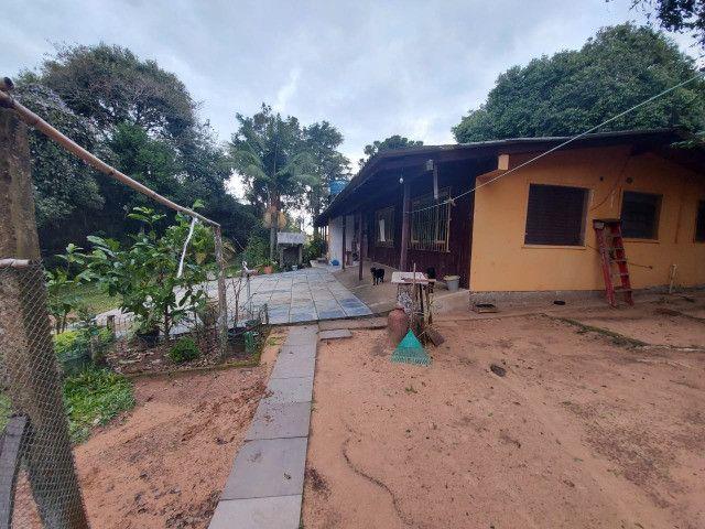 Sitio 8 hectares, 2 casas e pomar, ótimas pastagens, Velleda oferece - Foto 9