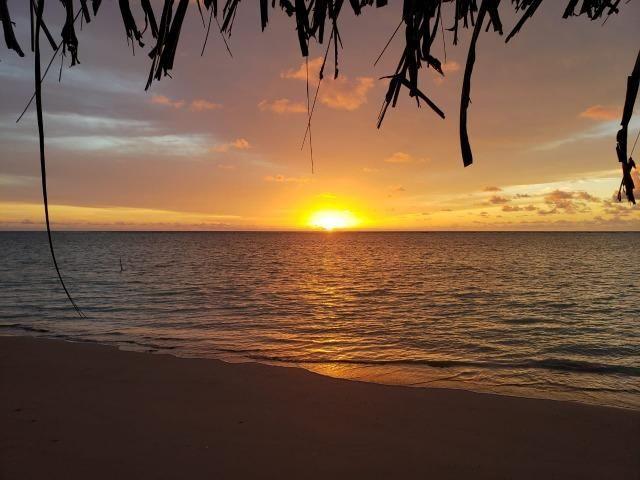 Patacho, venha morar ou ter um negocio em uma das praias mais belas do país. - Foto 2