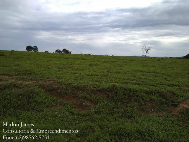 Fazenda em Americano do Brasil! - Foto 5