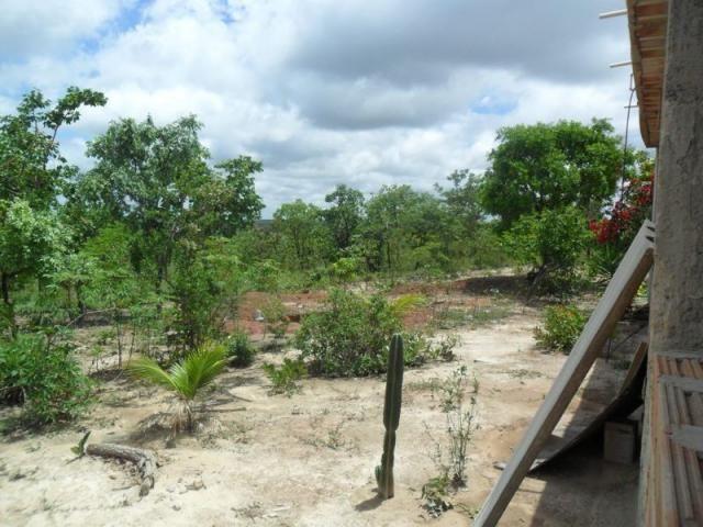 Chácara à venda com 3 dormitórios em Zona rural, Três marias cod:394 - Foto 12