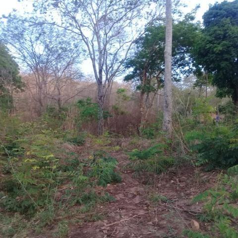 Chácara à venda em Zona rural, São gonçalo do abaeté cod:679 - Foto 6