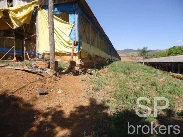Chácara à venda com 1 dormitórios em Serra de cima, Serra negra cod:FA002536 - Foto 12