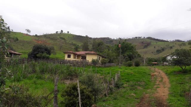 Chácara à venda em Centro, Piranga cod:5190 - Foto 3