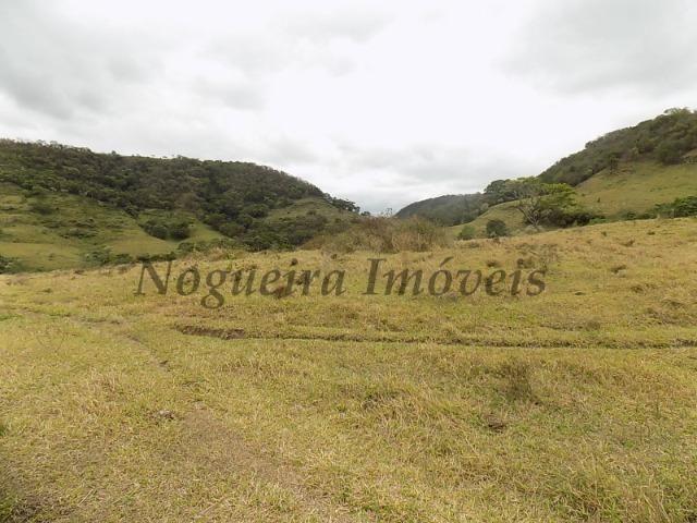 Fazenda de 65 alqueires na região (Nogueira Imóveis Rurais) - Foto 18