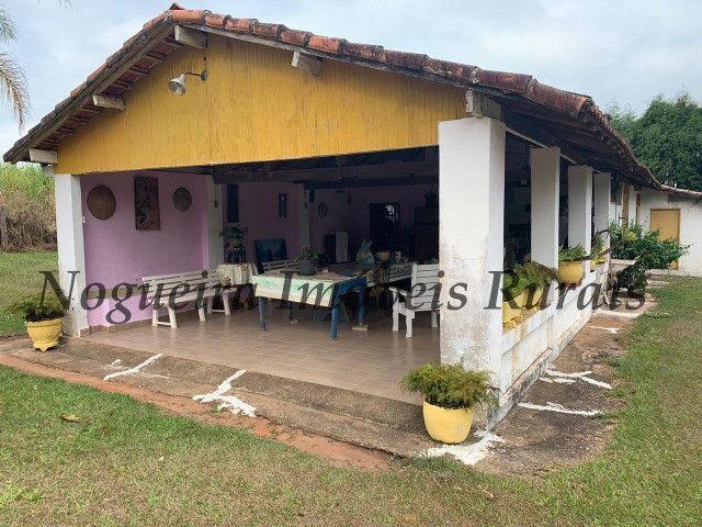 Fazenda com 69 alqueires na região (Nogueira Imóveis Rurais) - Foto 11