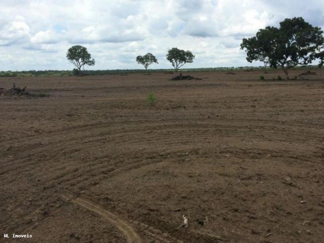 Fazenda para Venda em Gurupi, Área Rural de Gurupi, 3 dormitórios, 2 banheiros, 5 vagas - Foto 18