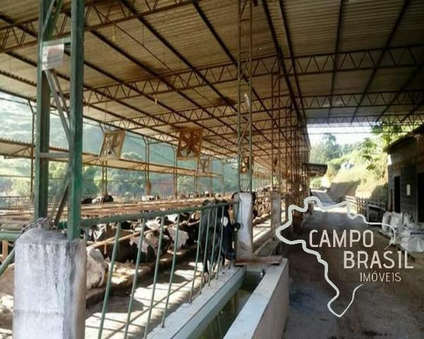 Linda Fazenda no Sul de Minas! Muito conforto e excelentes condições - Foto 6