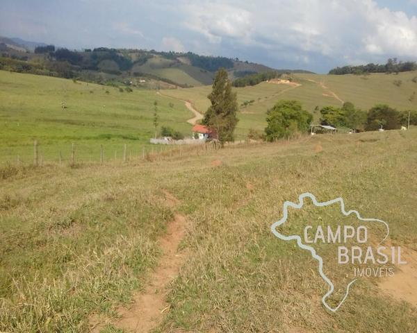 Fazenda de 98 alqueires no Sul de Minas! - Foto 15