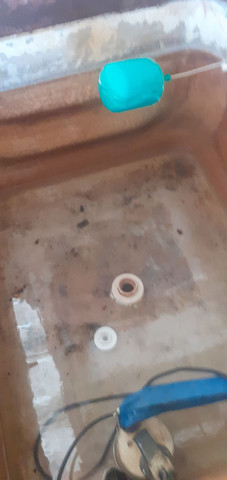 Limpeza e higienização  de caixa d água  dedetização de ratos e barata