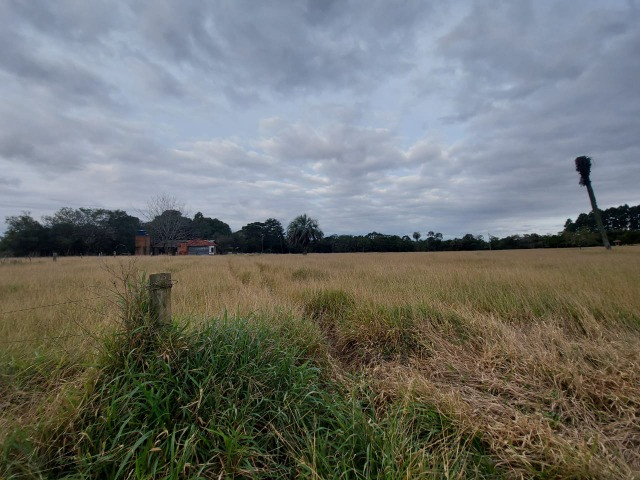 Sitio 8 hectares, 2 casas e pomar, ótimas pastagens, Velleda oferece - Foto 2
