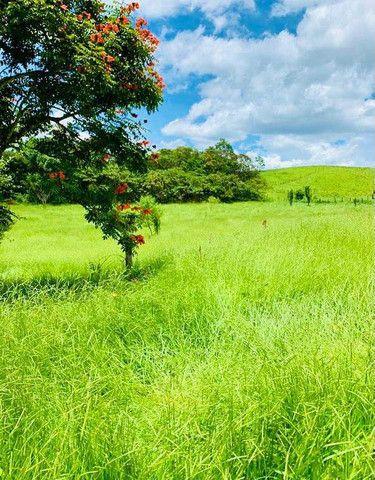 M-91 Grande oportunidade terrenos com 10.000 metros de área verde e vista para a represa - Foto 2