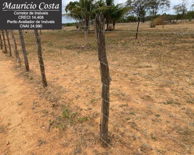 Fazenda à Venda em Campo Formoso - Bahia - Foto 18