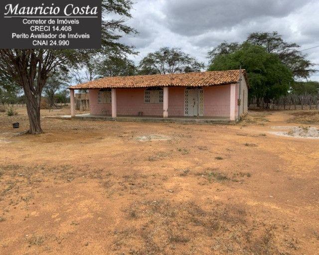 Fazenda à Venda em Campo Formoso - Bahia