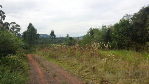 Terreno à venda em Sao borja, São leopoldo cod:8066
