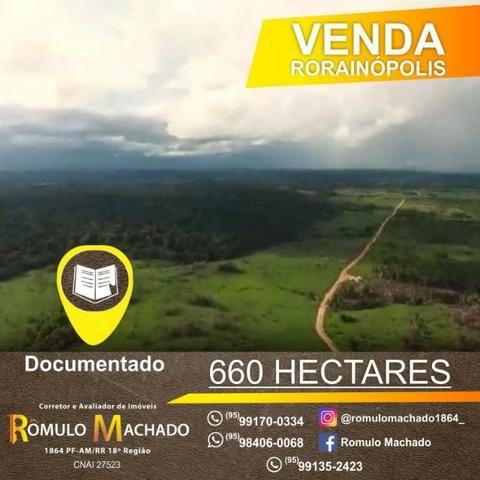 vendo fazenda de 660 hectares em rorainópolis-roraima