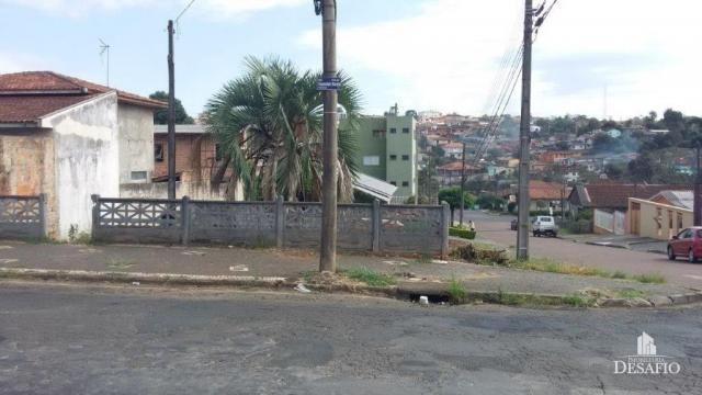 Terreno para alugar em Uvaranas, Ponta grossa cod:2016/2503 - Foto 6