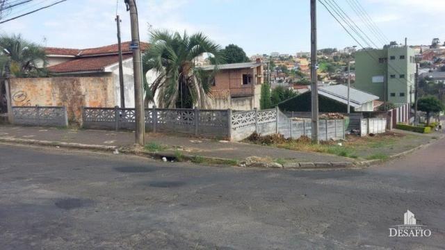 Terreno para alugar em Uvaranas, Ponta grossa cod:2016/2503 - Foto 5