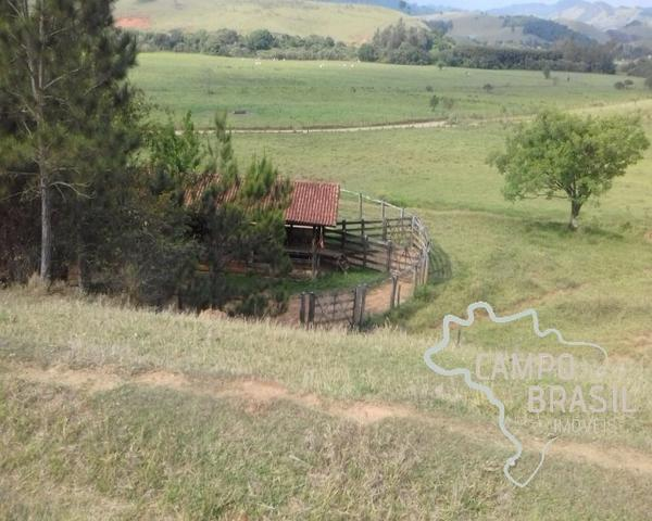 Fazenda de 98 alqueires no Sul de Minas! - Foto 14