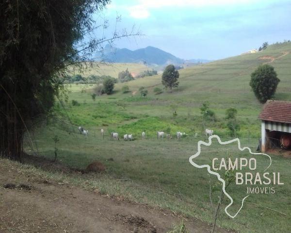 Fazenda de 98 alqueires no Sul de Minas! - Foto 19