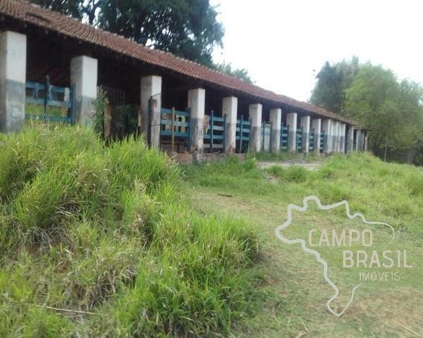 Fazenda de 98 alqueires no Sul de Minas! - Foto 7