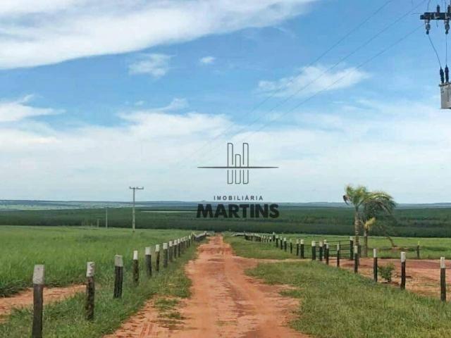 Fazenda - Bataguassu - Mato Grosso do Sul - Foto 5