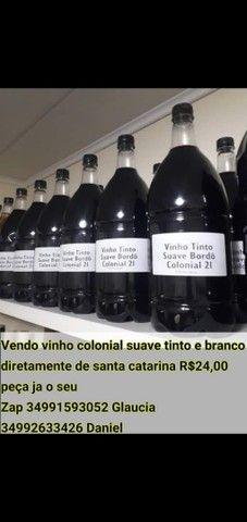 Vinhos coloniais - Foto 3