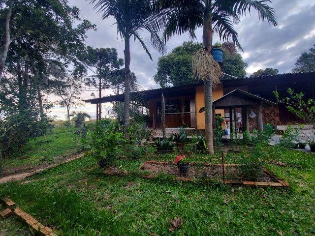 Sitio 8 hectares, 2 casas e pomar, ótimas pastagens, Velleda oferece - Foto 17